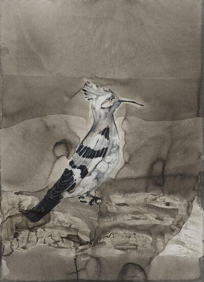Tamar Roded, 'Hoopoe', 2020