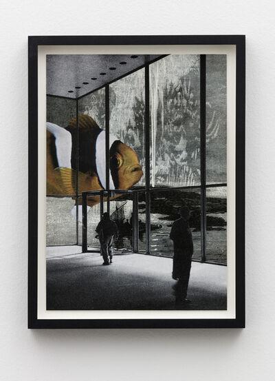 Jakob Kolding, 'Foreign Fish', 2017