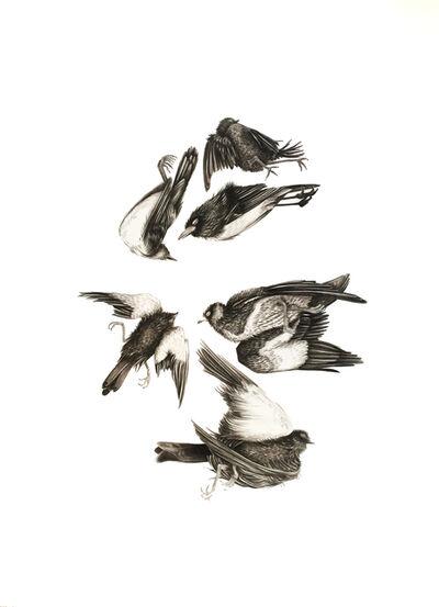 Çağla Köseoğulları, 'Untitled', 2015
