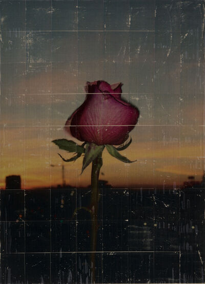 Parker Ito, 'Capitol Records Shit Toots (single red rose at sunrise)', 2016