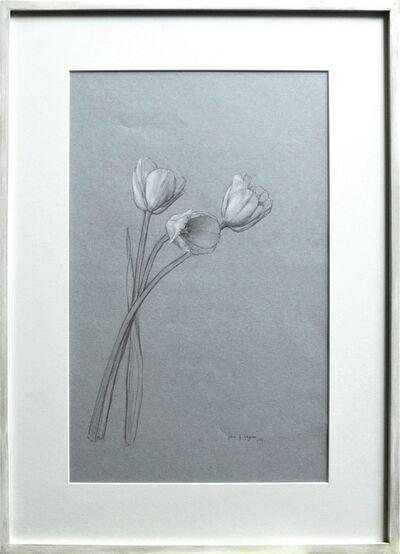 Katie Whipple, 'Dutch Tulips', 2019