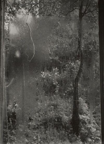 Josef Sudek, 'Quatre saisons : l'été', 1940-1954
