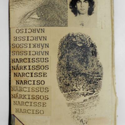 Hudinilson Jr, 'Narcisse', 1980s