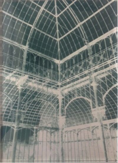 Janet Laurence, 'Botanical Residues (After Life of the great glasshouses)', 2006