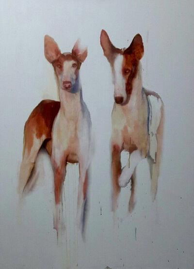 Kobi Assaf, 'Greyhound', 2016