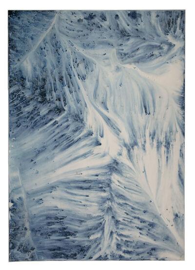 Meghann Riepenhoff, 'Ecotone #899 (Bainbridge Island, WA 05.22.20, Draped on Big Leaf Maple Windfall Branch, Storm)', 2020