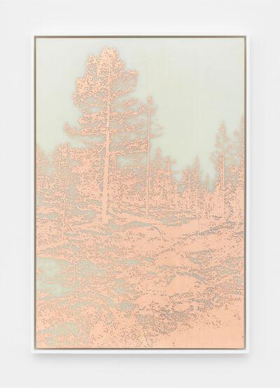 James Hoff, 'Useless Landscape No. 35', 2016