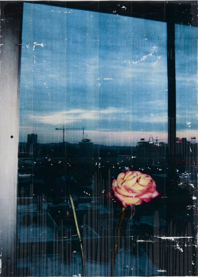 Parker Ito, 'Capitol Records Shit Toots (purple rose, orange rose)', 2016