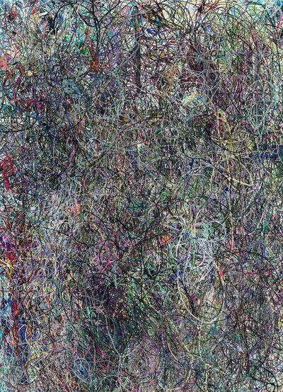 Florian Maier-Aichen, 'Untitled Negative (Lasso Painting #7)', 2017