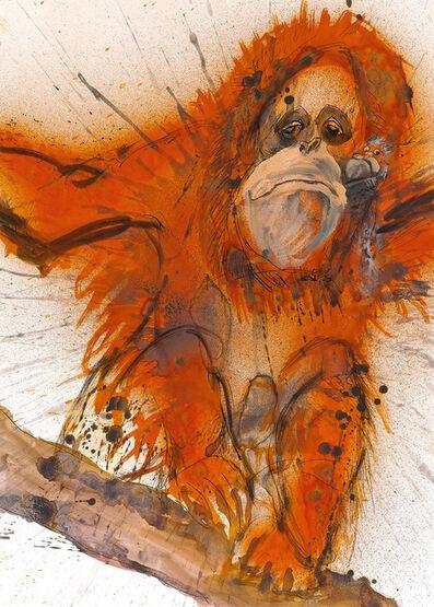 Ralph Steadman, 'Bornean/Sumatran Orangutan', 2017