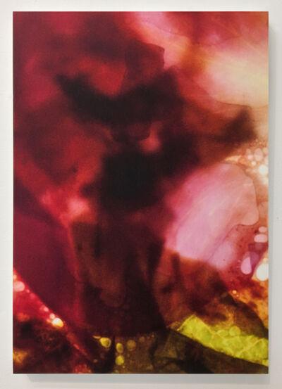 Marc Handelman, 'Hortus Concousus', 2016