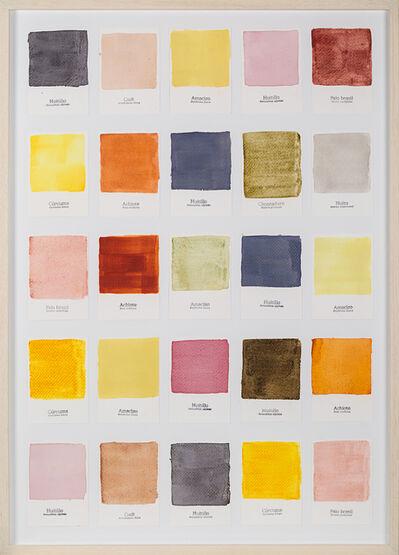 Susana Mejía, 'Carta de Color II', 2015