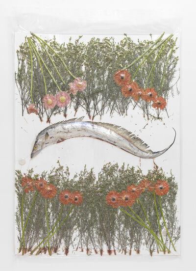 Brad Troemel, '1 Fish, Flowers, 3 Crypto Vest Litecoins, 1 AOCS Copper Round', 2014