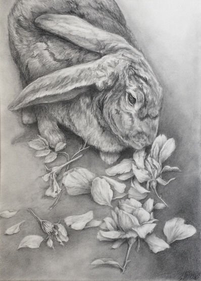 Amanda Besl, 'Portrait of a Young Hare', 2019