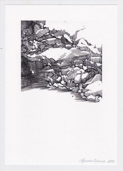 Ann-Marie James, 'After Dürer D', 2018