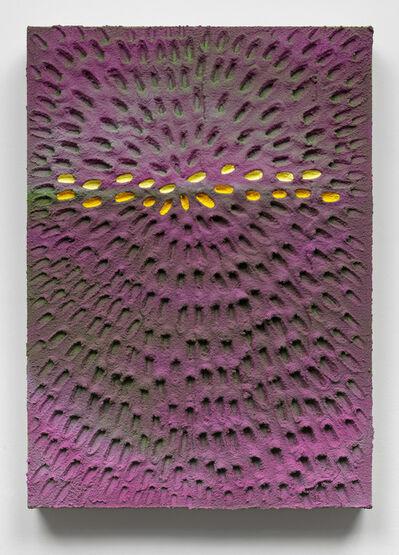 Jennifer Guidi, 'Rarity in Nature', 2016
