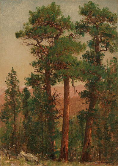Worthington Whittredge, 'Mountain Forest', Mid 1800s
