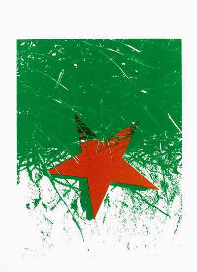Sándor Pinczehelyi, 'Star, grass ', 1979