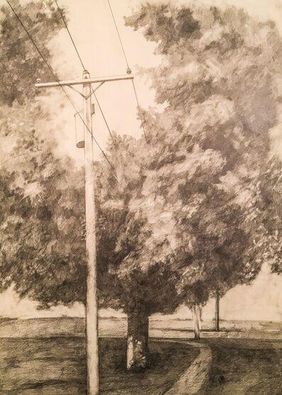Laura Broaddus Hexner, 'Telephone Line II', 2014