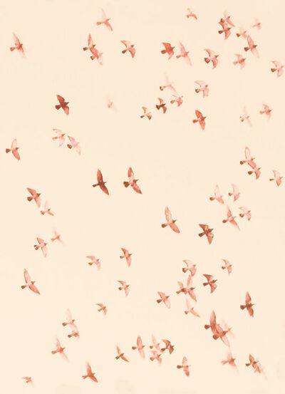 Jordan Sullivan, 'Birds 9', 2019