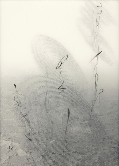 Chaco Terada, 'Calligraphy of the Soul II', 2010