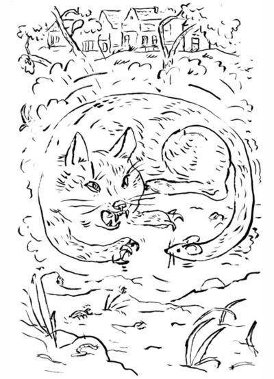Markus Vater, 'Cat Chasing', 2017