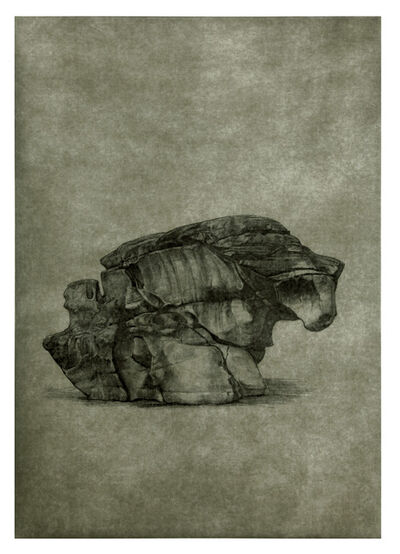 Shao Yinong & Mu Chen 邵逸农 & 慕辰, 'Objects of Nature - Qiemo', 2014
