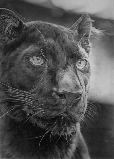 Aythami Armas, 'Panther'