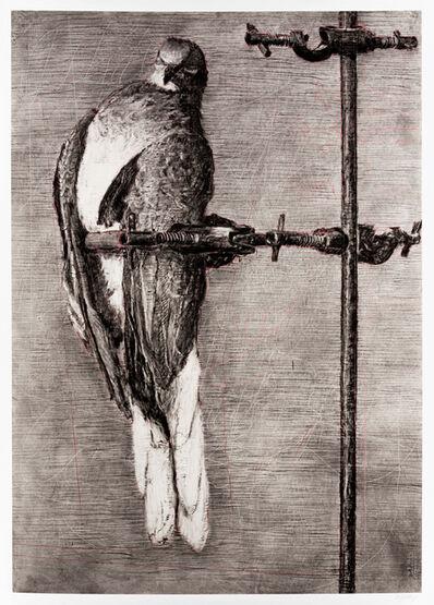 William Kentridge, 'Bird Catcher'