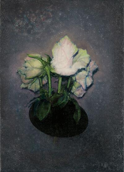 Attila Szűcs, 'Black hole roses', 2019