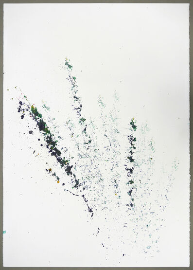 Maria Thereza Alves, 'Unrejected wild flora ', 2017