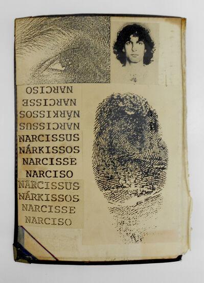 Hudinilson Jr., 'Narcisse', ca. 1980