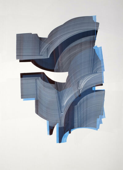 Sergio Barrera, 'Veiled Chameleon #22', 2012