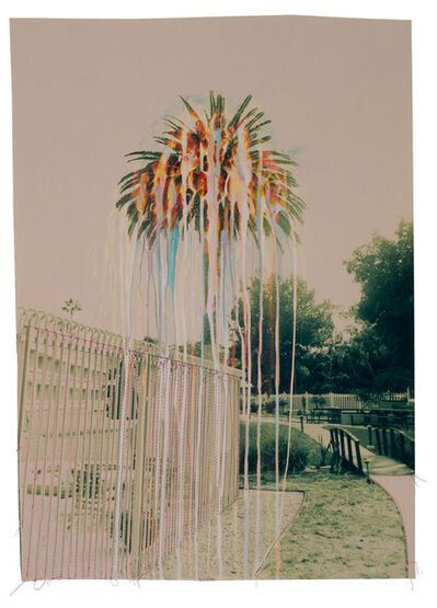 Andrew K. Thompson, 'Untitled (Green Rainbow Palm Tree)', 2016