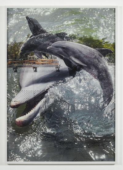 Roe Ethridge, 'Double Dolphin #3', 2019