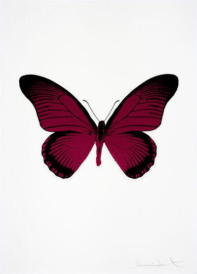 Damien Hirst, 'The Souls IV (Fuchsia Pink - Raven Black)', 2010