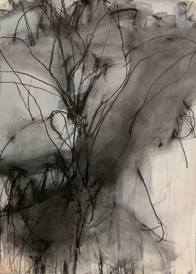 Andrea Rosenberg, 'Untitled 42', 2020