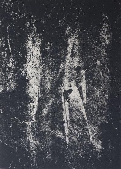 Michael Dingley, 'Eden', 2019