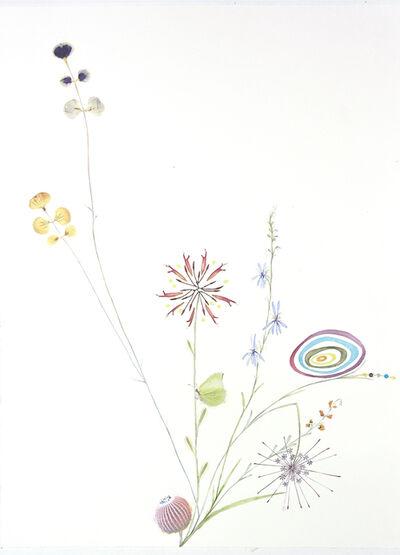 Marilla Palmer, 'Bee Balm and Blue Lupine', 2018
