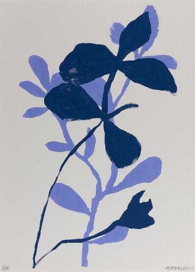 Luz Helena Caballero, 'Botánicas', 2018
