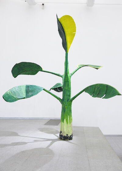 Yutaka Sone, 'Tropical Composition/Banana Tree No. 7', 2016