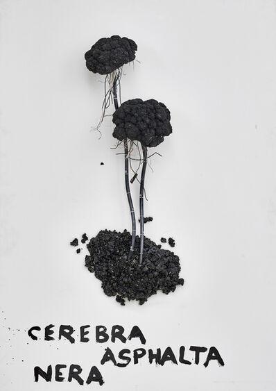 Kristof Kintera, 'Cerebra Asphalta Nera', 2018