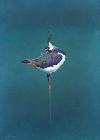 Tim Hayward, 'Preen', 2018
