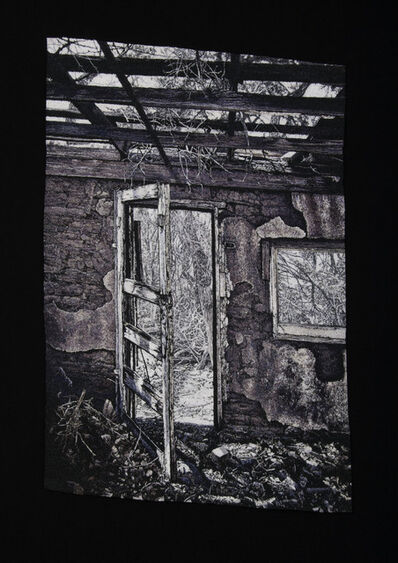 Carol Shinn, 'Encroaching Forest'