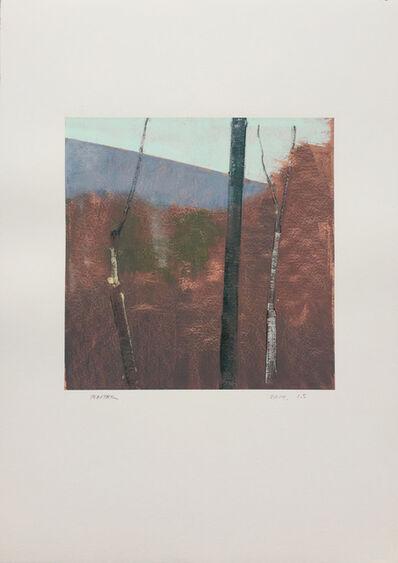 Stephen Pentak, '2014.1.5', 2014