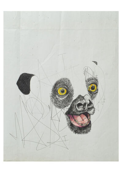Louis Masai, 'WWF Series - «Man this situation is ridiculous»', 2019