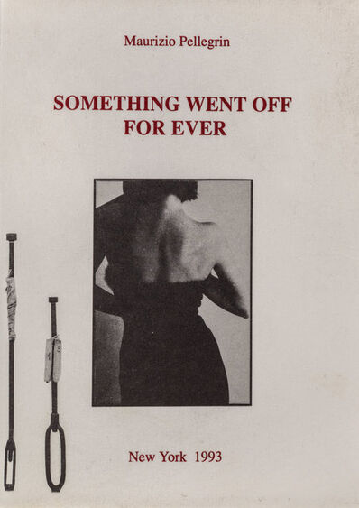 Maurizio Pellegrin, 'Something went off for ever', 1993