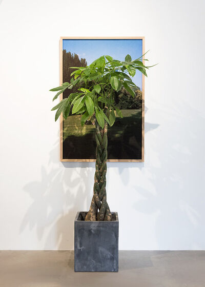 Trevor Yeung, 'Garden Sitters (The world is burning)', 2018