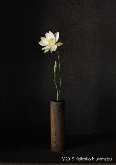Keiichirô Muramatsu, 'A Stage Lotus 4-7', 2015