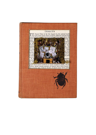 laura beaumont, 'An Insect Book for the Pocket', 2015